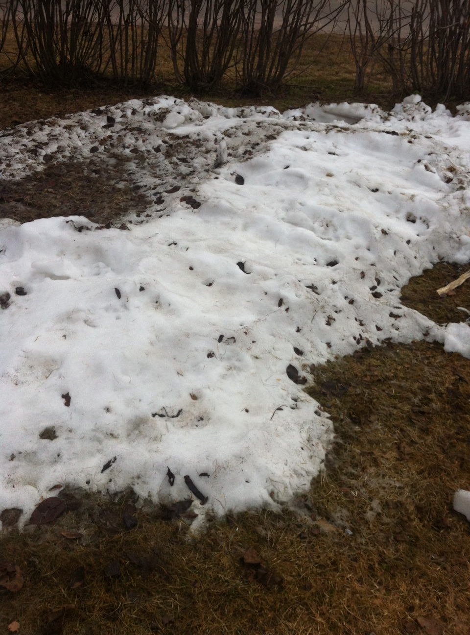 Slutet nära för snöhögen